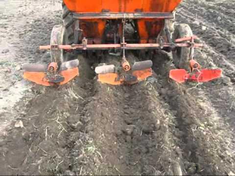 potato planting 2011