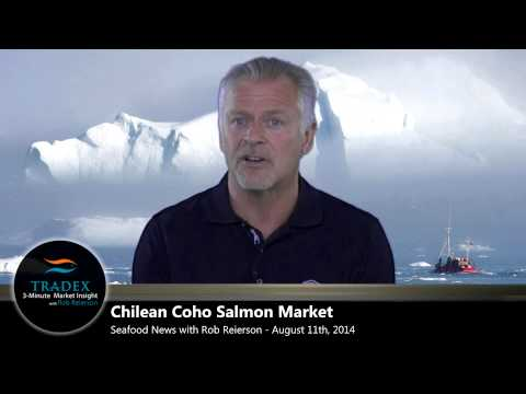 3-Minute Market Insight - Uncertainty for Norwegian Salmon Exports; Hokkaido Chum Withdraws From MSC