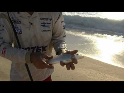 BEACH FISHING BASICS