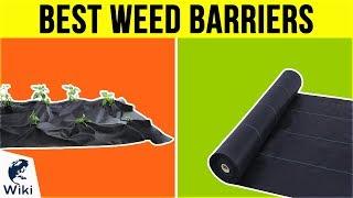 10 Best Weed Barriers 2019