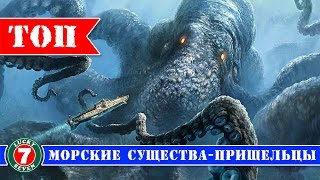 7 Самых Загадочных Морских Существ Снятых На Камеру ! Топ 7 самых необычных морских существ в мире.
