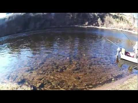 Salmon Fishing Scotland Spring Salmon Fishing on the Tay February...
