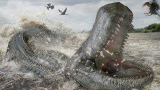 A Giant Extinct Caiman - Purussaurus