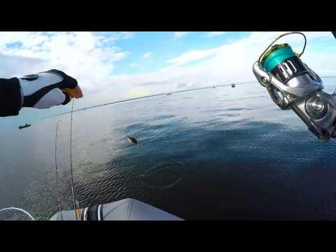 ловля микроджигом на озере