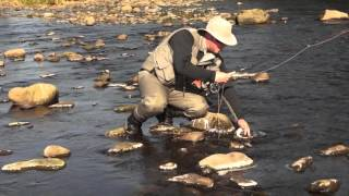 Dry Fly fishing; Foam lines and flats. DVD preview