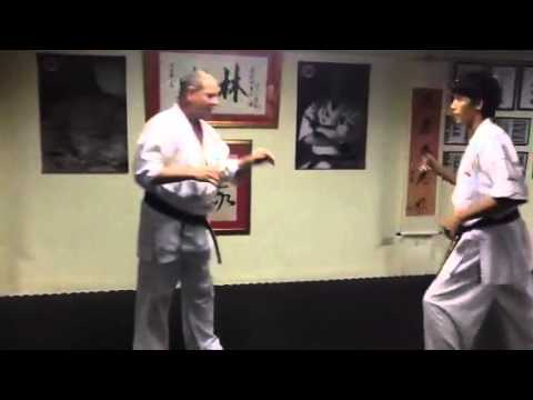 Shorin kempo honbu knee techniques www.shorin-kempo.com Image 1