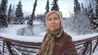 #1072 США Аляска Капризы природы В поисках смысла жизни