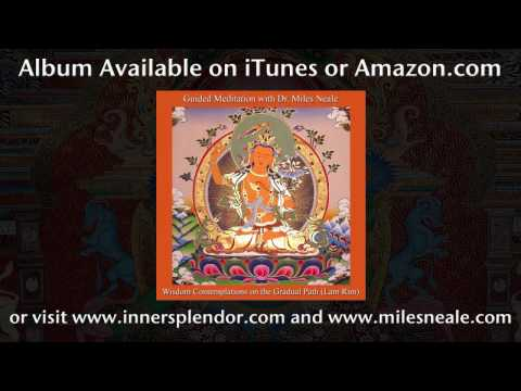 Mindfulness Based Guided Meditation With Dr. Miles Neale - www.innersplendor.com