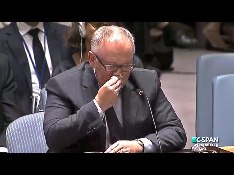 Emotional MH17 Crash Speech By Netherlands Delegate to UN