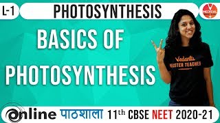 NEET Biology | Photosynthesis - L1 | Vedantu Master Class | AIIMS & JIPMER Tips by Dr. Vani sood