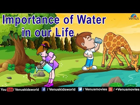the importance of life our