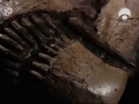 La tierra documental BBC Extinción periodo pérmico