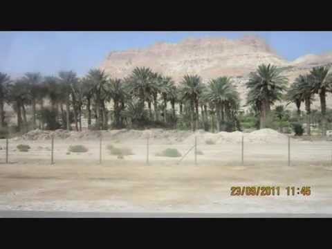 Израиль. Мёртвое море и  Красное море