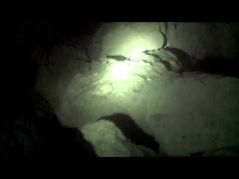 Едем на великах в пещеру! 100км на великах!!!