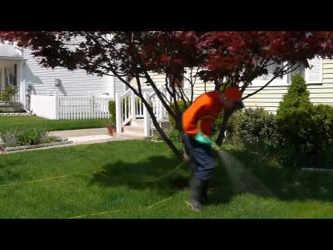 Pennsylvania Lawn Care | Lawn Care Pennsylvania | Lawn Care PA
