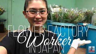 TRABAHO SA JAPAN 2019 |  FACTORY WORKER IN JAPAN | PART TIME WORK | Vlog# 6