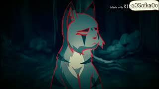 Клип Коты Воители/ CopyCat  ( MeMe  )