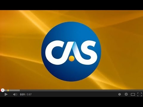 Members of the Casualty Actuarial Society (CAS) share their insights on what it means to be a part of the CAS. In their own words, they explain why the CAS i...