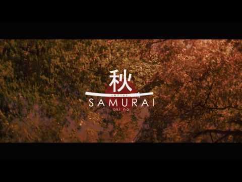 XTREME KATANA | Tanguy GUINCHARD | [VAN3D Remix]