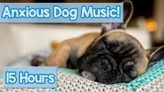 NEW Relaxing Dog Music! How to Relax an Anxious Dog! Calm a Stressed Dog and Help Puppies Sleep! 🐕