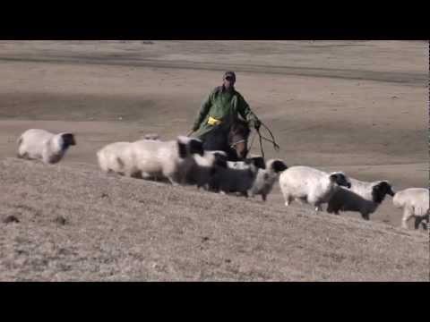 Un proyecto de la FAO en Mongolia destaca la participación comunitaria