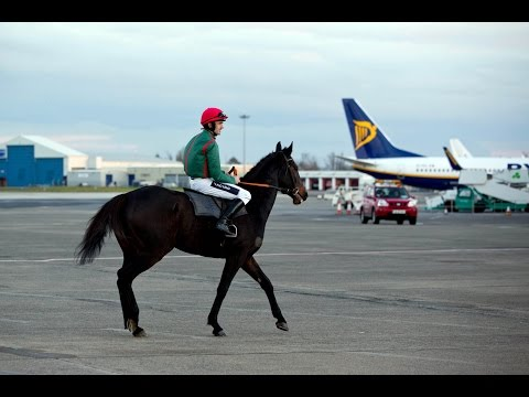 Ruby Walsh Launches the Shannon Airport Christmas Racing Festival at Limerick Racecourse