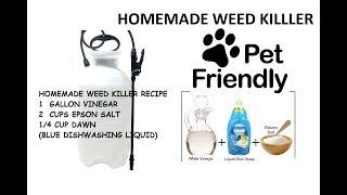 Homemade Weed Killer DIY Vinegar + Epson Salt + Dawn = PET FRIENDLY
