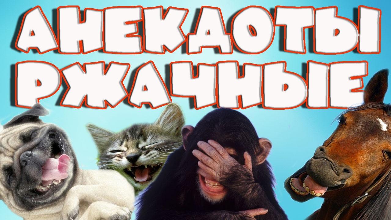 Видео Анекдоты Смотреть Онлайн