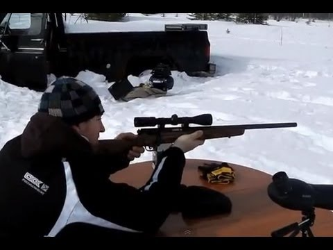 Shooting new Savage Mark II bolt action 22lr