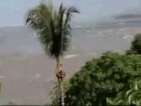 Tsunami Shocking video.