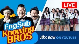 JTBC NOW 📺 - KPOP Streaming (24/7) : KPOP線上收看 , 音楽ストリーミング : Knowing Bros