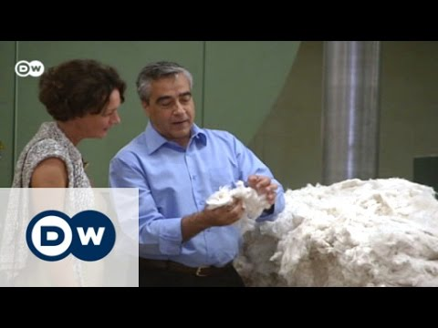 Capital Controls Hobble Greek Business | Made in Germany