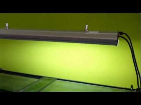 4AQUA Osvětlení pro miniakvária 4x24W T5 | Rostlinna-akvaria.cz
