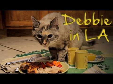Debbie in LA: Cats Are People Too - Ep. 5