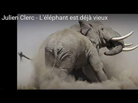 Julien Clerc - L Elephant Est Deja Vieux