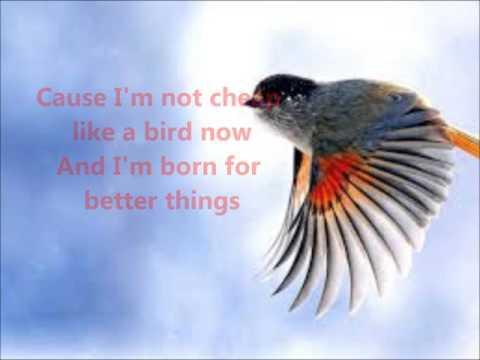 Apologetix - Cheap Birds