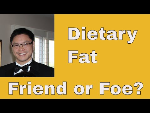 The Aetiology of Obesity Part 6 of 6: Dietary Villains - Fat Phobia