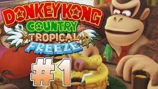 ¡LE ROBAN LA ISLA A DONKEY KONG! | PARTE #1 | DONKEY KONG COUNTRY: TROPICAL FREEZE  (SWITCH)