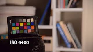 Nikon D600 Low Light High ISO Video Test