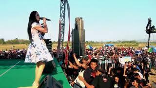 download lagu New Pallapa Muskurane Live Soreng Community gratis