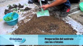 cristales de agua Oaxaca