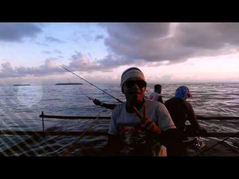Pulau Owi