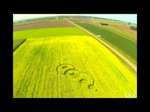 September crop circles - UK & Netherlands
