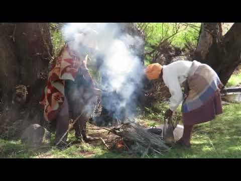 Makhubelu clip