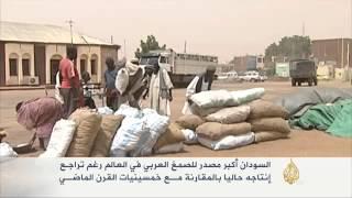 السودان أكبر مصدر للصمغ العربي في العالم