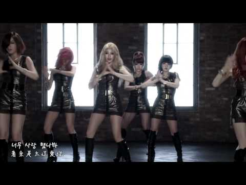 [HD 中韓字] T-ara - DAY BY DAY (Dance ver.) MV
