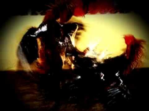 Joz Riky FT Manny D&La China - Mi Gallo Es De Pura Sangre (AFRODOM)