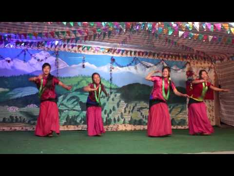 Jhapa Jaryo Ki (covered Dance By Shalijas Girls In Nangi) video