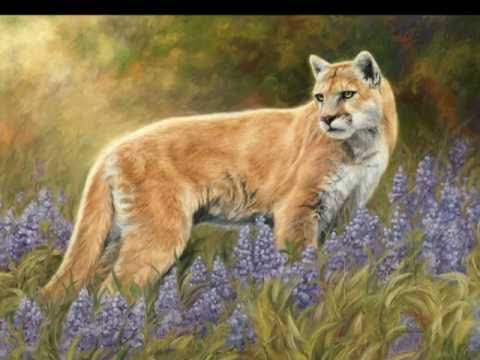 Wildlife Art: North American Wildlife Paintings by Lucie Bilodeau