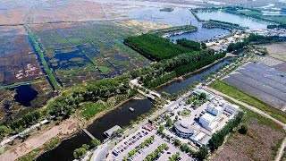 Download Lagu Xiongan New Area's Baiyang Lake sees peak traffic during Labor Day holiday Gratis STAFABAND